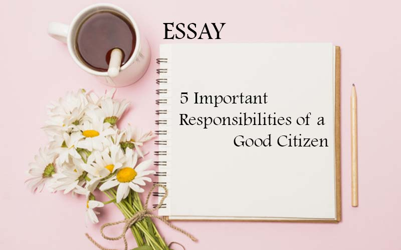 how to choose which school- specific essay to write about