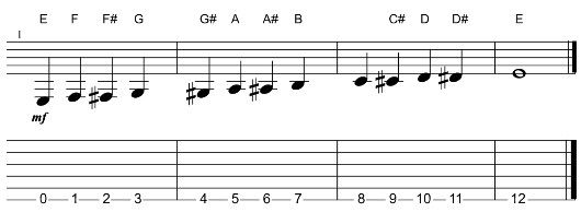 low E string of the fretboard