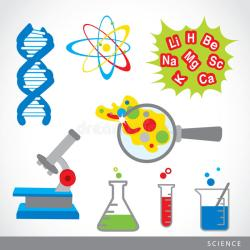 Science for Primary 3