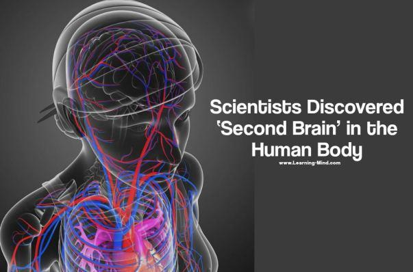 second brain