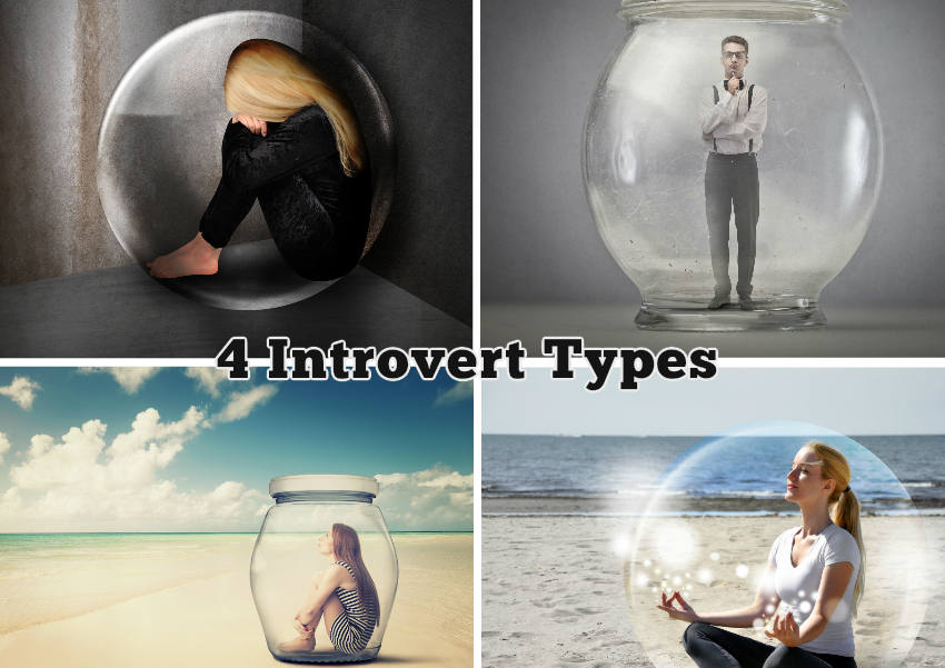 4 introvert types