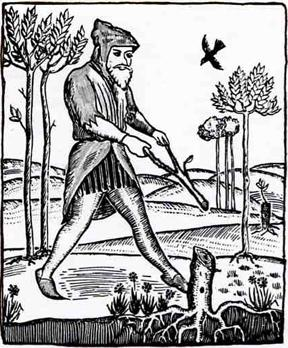 dowsing wand