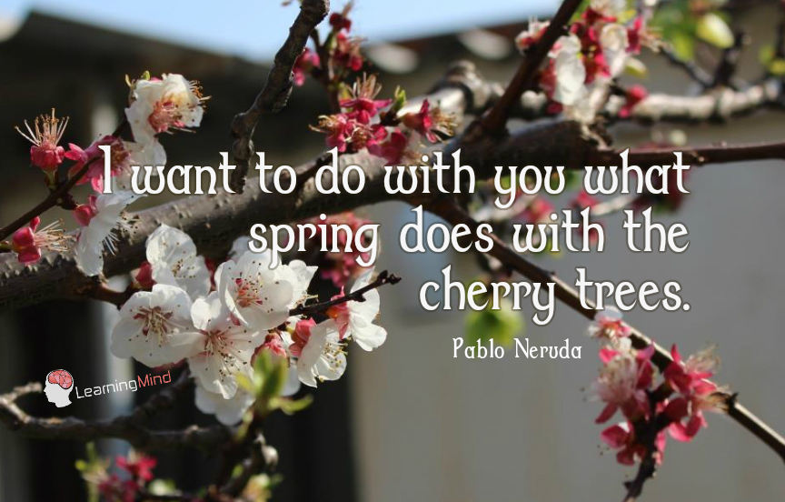 I want to do with you what spring does with the cherry trees.