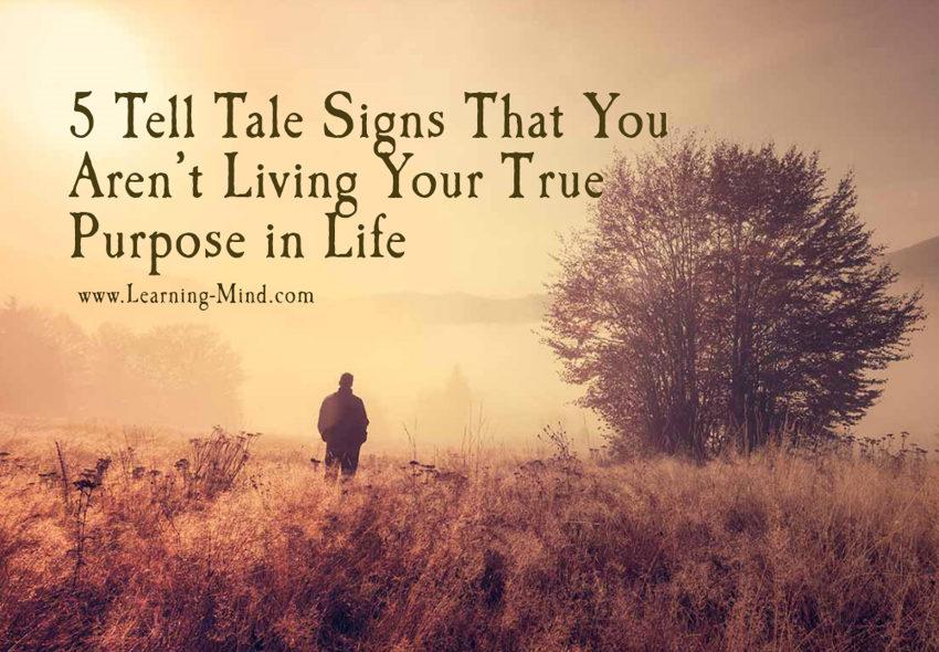true purpose in life