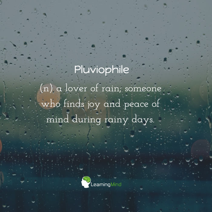 Pluviophile word of the day
