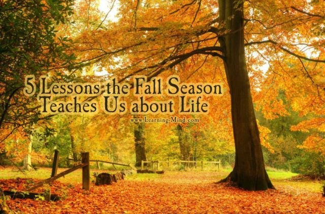 5 Lessons the Fall Season Teaches Us about Life – Learning Mind