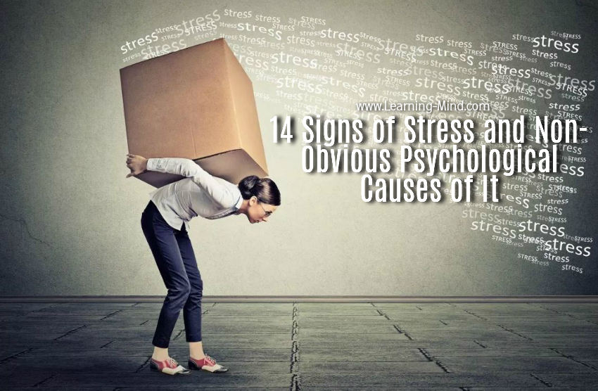 signs of stress causes
