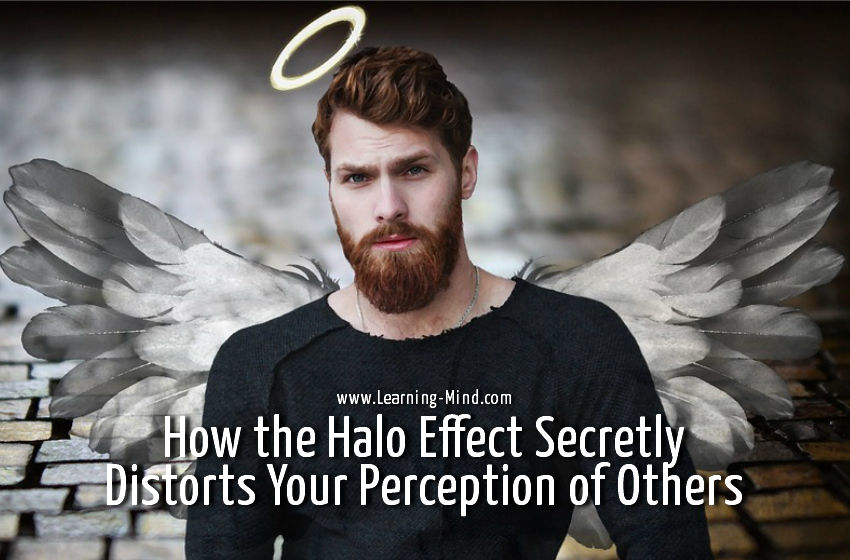 halo effect perception