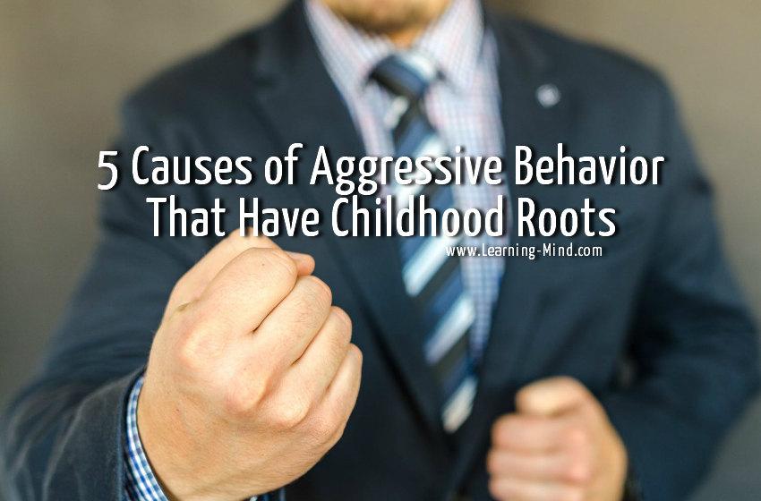 Aggressive Behavior Childhood Roots