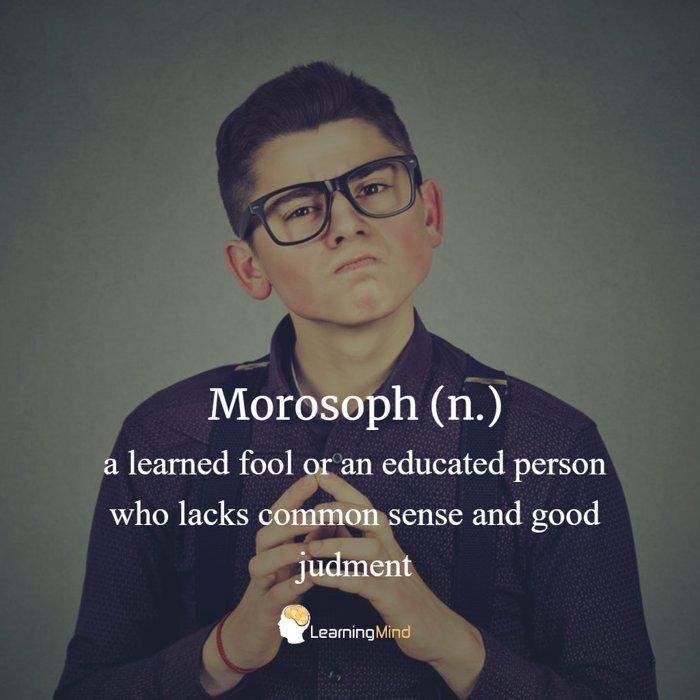 morosoph definition