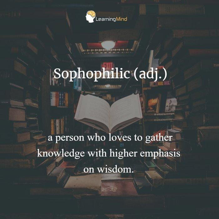 Sophophilic definition