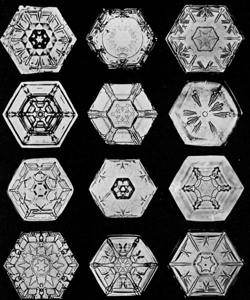 snowflakes microscope