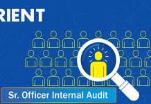 Internal-Auditor-Jobs-2020-Lahore-Orient