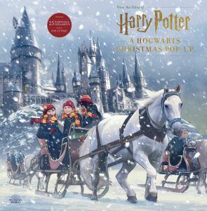 Harry potter pop up book