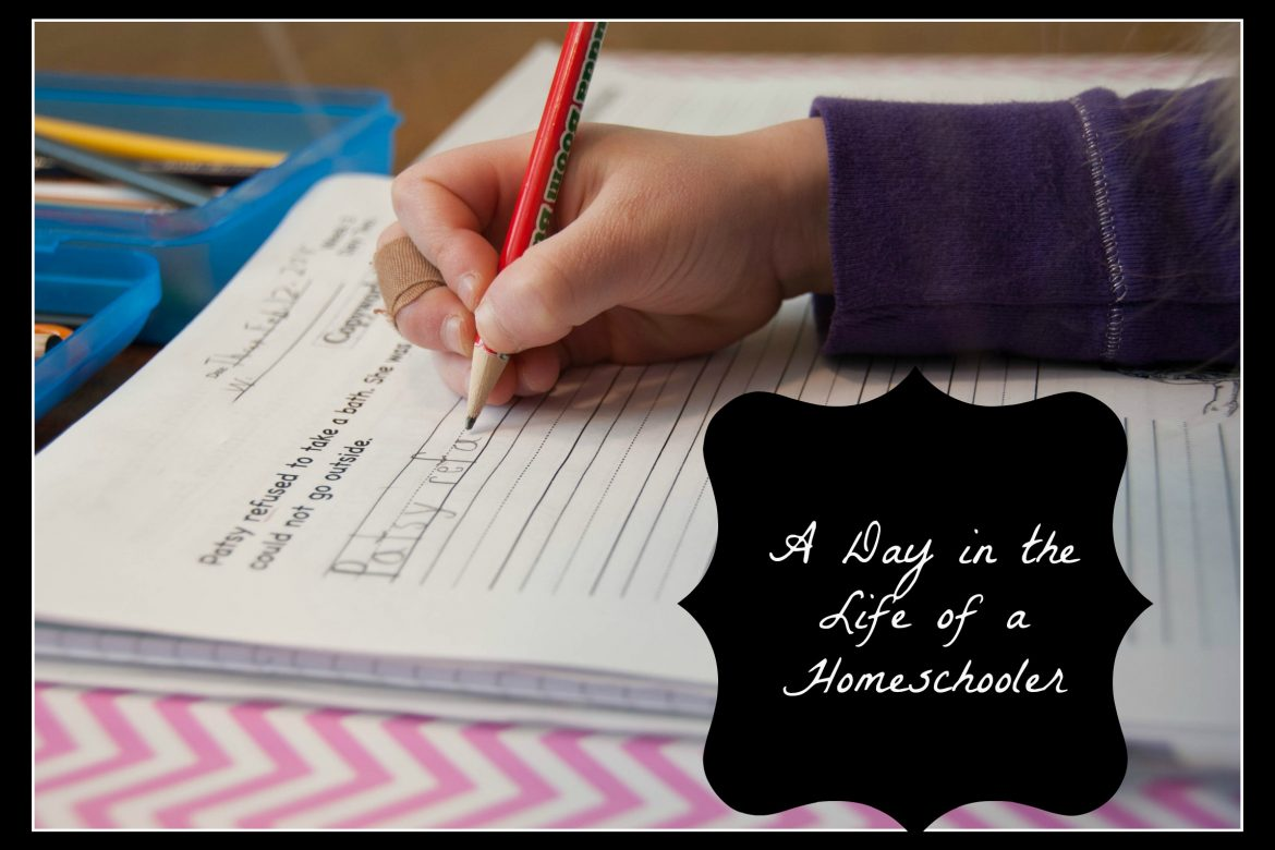 "Learning Mama's ""Day in the Life of a Homeschooler"""