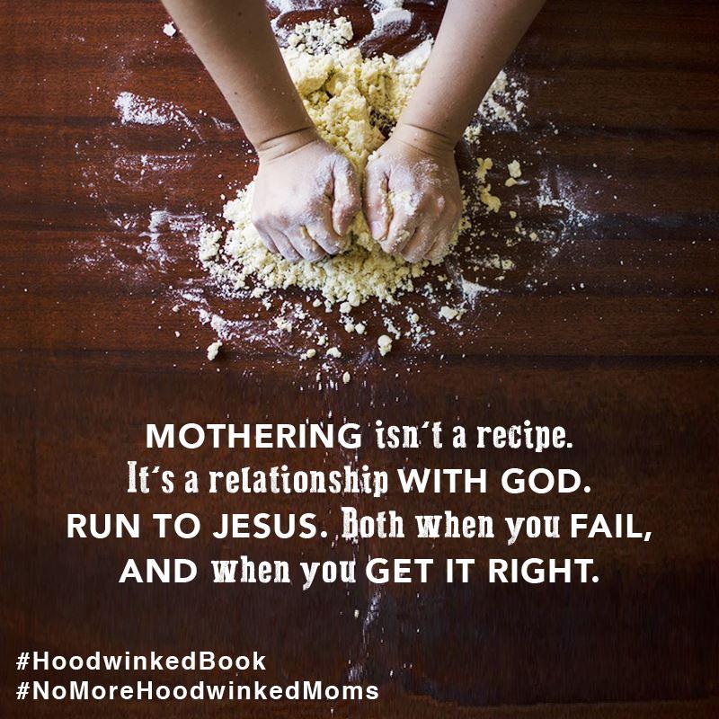 Motherhood isn't a recipe - Hoodwinked Book Review