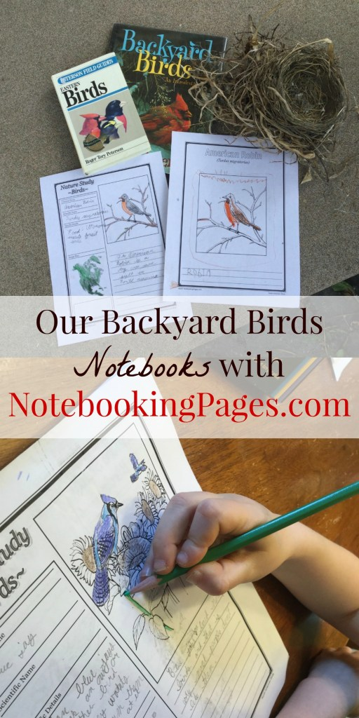 NotebookingPages.com has thousands of premade notebooking pages to suit students of all ages, in all subject areas. A Lifetime Membership get's you access to everything!