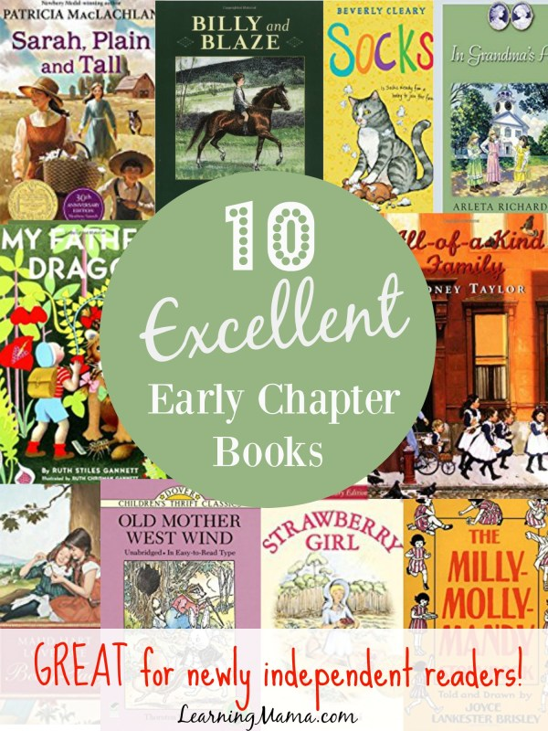 Your child has moved beyond the levelled readers, now what? There are much better choices out there than the magic fairy under pant variety! Check out this list of EXCELLENT early chapter books that will build fluency AND a love of good books in your young reader!