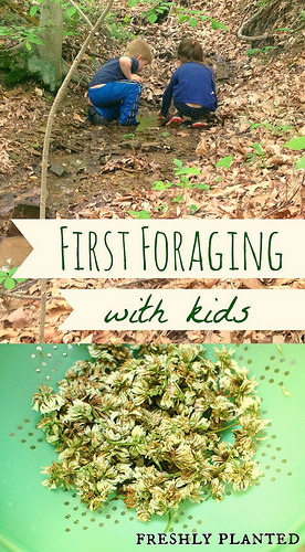Things to do outside with your kids this summer: forage for wild edibles!