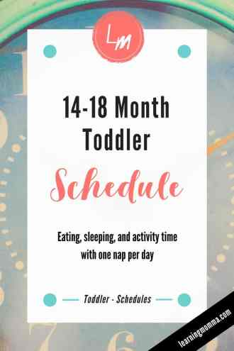 15 Month Old Schedule - One Nap