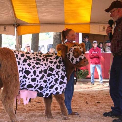 Ryder at the Deerfield Fair