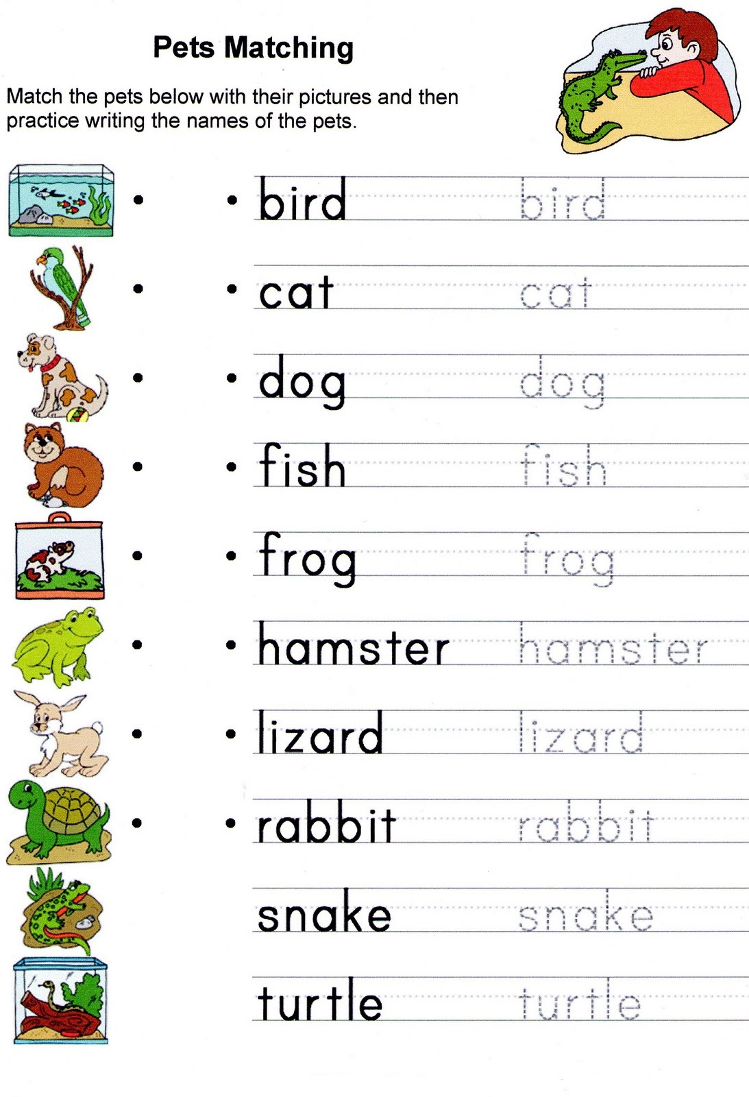 Esl Adjectives Worksheet Animals