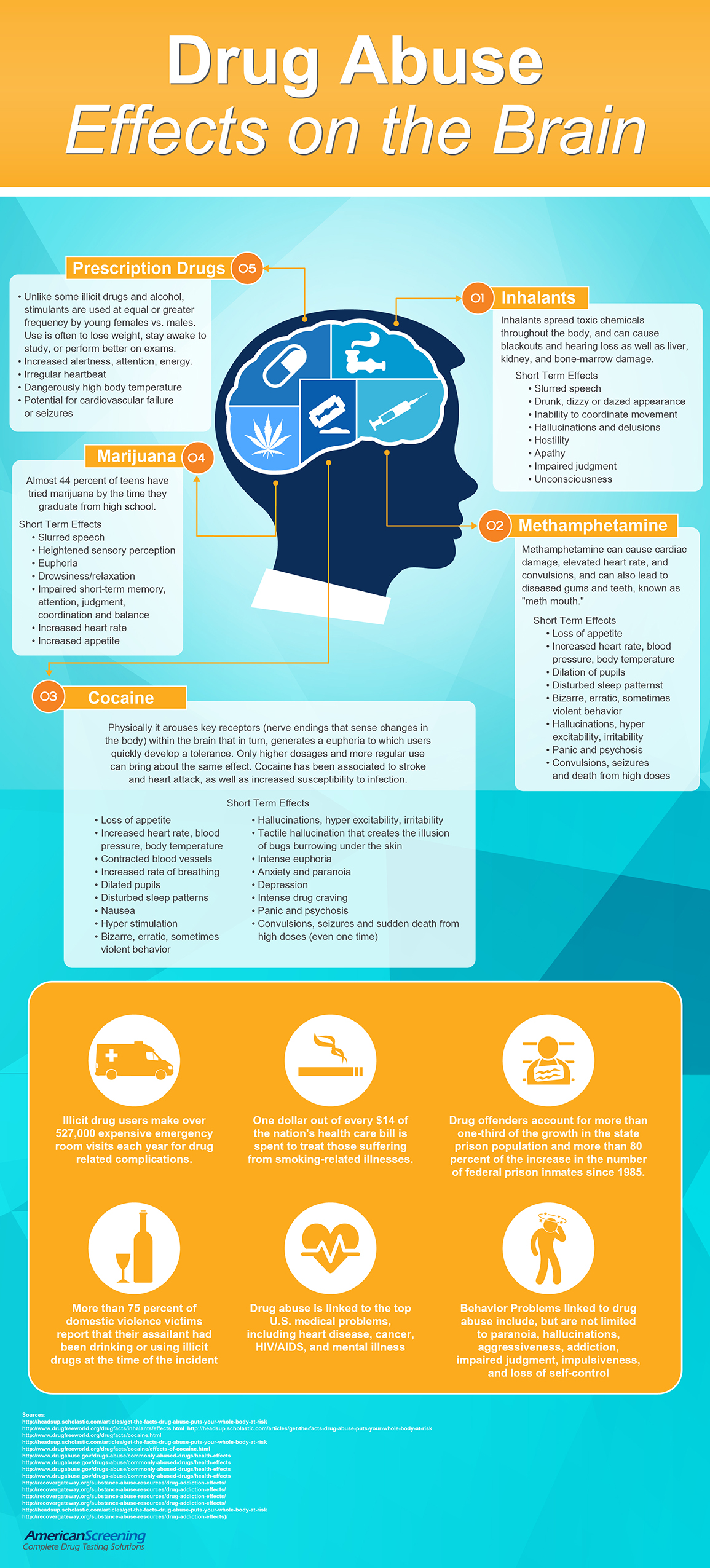 Drug Abuse Effects On The Brain Infographic