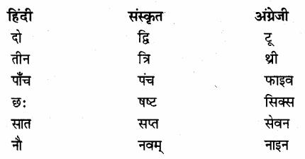 NCERT Solutions for Class 7 Hindi Vasant Chapter 10 अपूर्व अनुभव (तेत्सुको कुरियानागी) 1