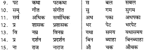 NCERT Solutions for Class 8 Hindi Vasant Chapter 11 4