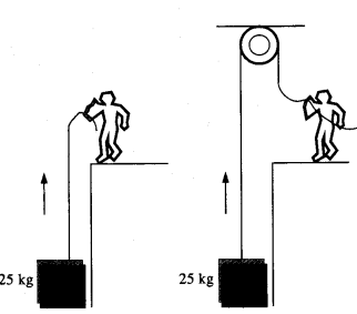 NCERT Solutions for Class 11 Physics Chapter 5 Laws of Motion 27