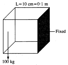NCERT Solutions for Class 11 Physics Chapter 9 Mechanical Properties of Solids 7