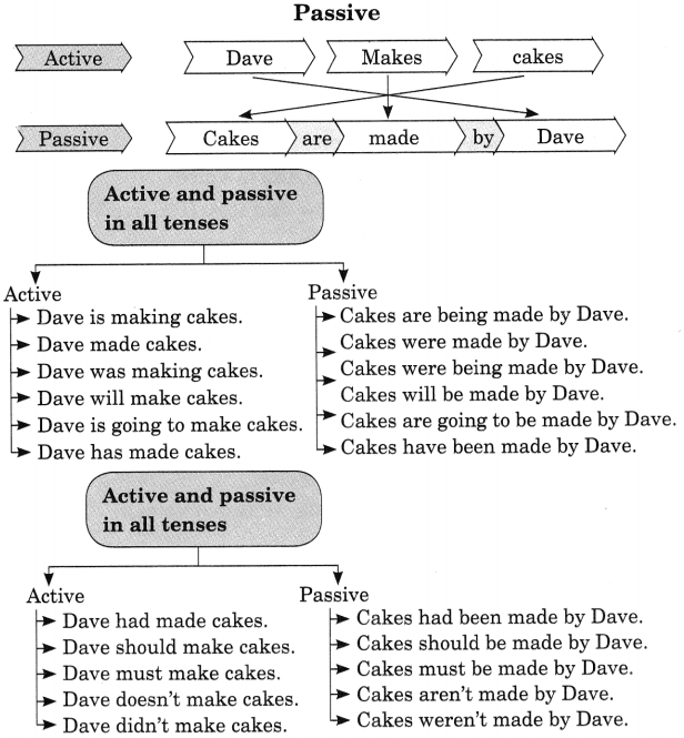 Active And Passive Voice Exercises for Class 8 With Answers CBSE