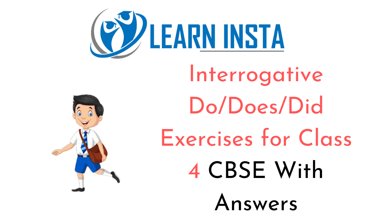 Do Does Did Exercises for Class 4 CBSE with Answers