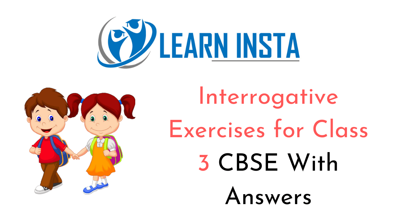 Interrogative Exercise for Class 3 CBSE with Answers