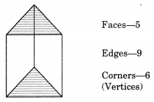 Visualising Solid Shapes Class 7 Notes Maths Chapter 15 .3