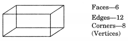 Visualising Solid Shapes Class 7 Notes Maths Chapter 15 .4