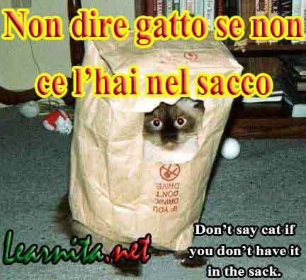 Italian idioms - Non dire gatto se non ce l'hai nel sacco