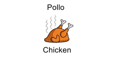 Pollo - Chicken