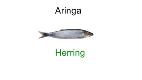 good fish names