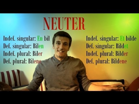Norwegian Nouns
