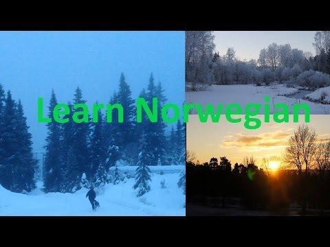 Norwegian winter