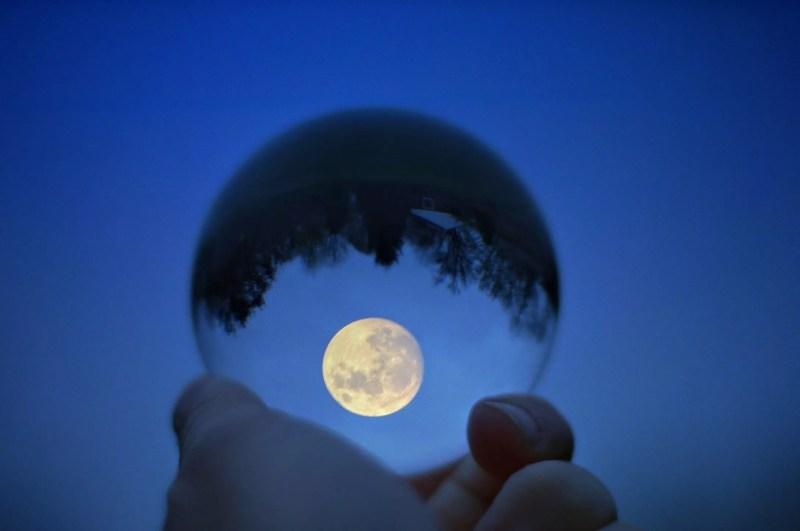 Gros plan, de, main, tenant, boule cristal, à, reflet arbre, contre, lune, dans, ciel bleu