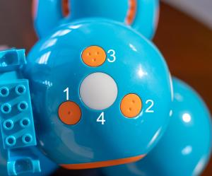 Photo of the top of Dash Robot's head showing four buttons