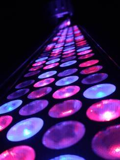 LED stage light in magenta
