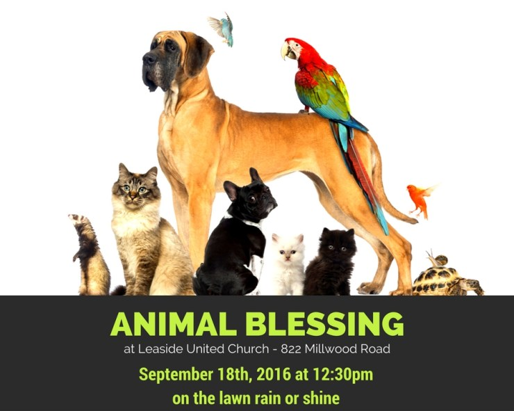 Animal Blessing at Leaside United Church