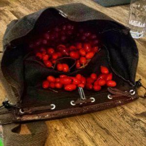 vintage-foraging-bag-wild-food-berries