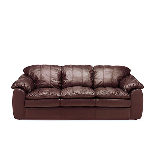 Shanelle Leather Sleeper Leather Express Furniture