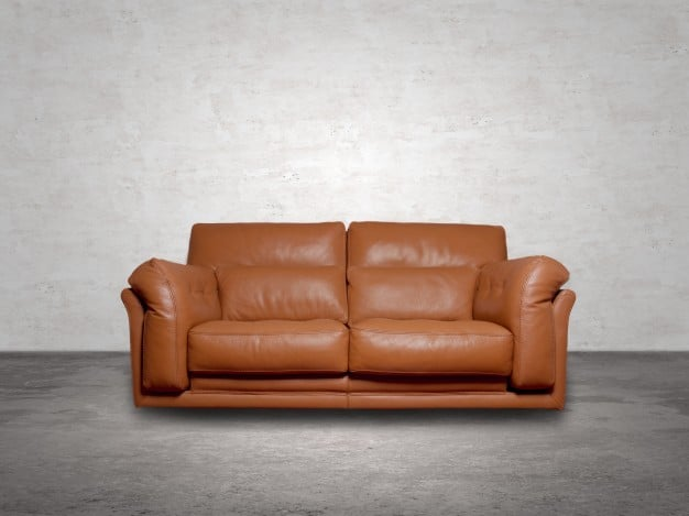 Advantages and Disadvantages of Leather Sofas