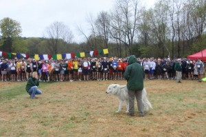 Atka the Ambassador Wolf starts the runners with a howl!