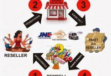 Peluang Bisnis Online Gratis
